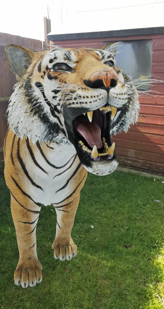There's a tiger in my garden